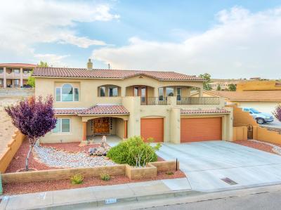 Albuquerque Single Family Home For Sale: 1801 Calle Del Vista Road NW