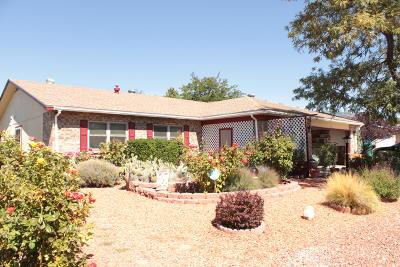 Rio Rancho Single Family Home For Sale: 91 Arizona Sunset Road NE