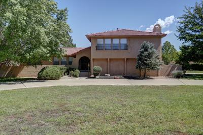 Los Ranchos Single Family Home For Sale: 6500 Caballero Parkway NW