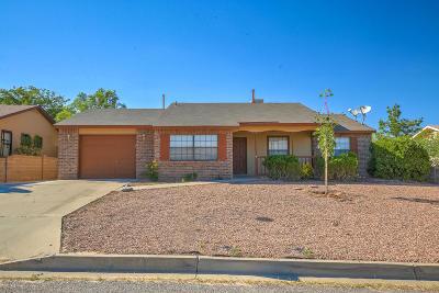 Rio Rancho Single Family Home For Sale: 1933 Roanoke Drive NE