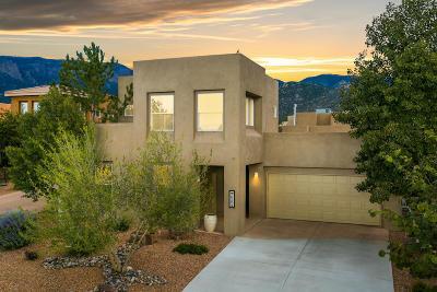 Albuquerque Single Family Home For Sale: 6204 Buffalo Hills Drive NE