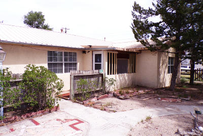 Torrance County Single Family Home For Sale: 507 Leonard Avenue