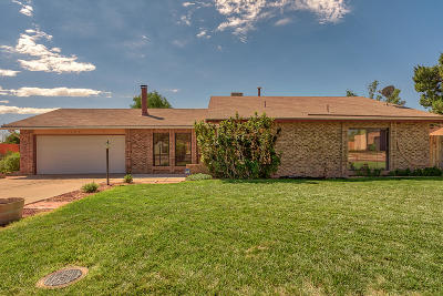Rio Rancho Single Family Home For Sale: 2100 Spruce Needle Road SE