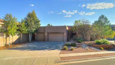 Single Family Home For Sale: 13212 Twilight Trail Place