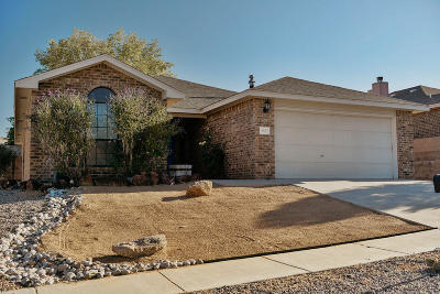 Albuquerque Single Family Home For Sale: 4520 Silver Arrow Drive NW