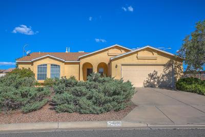 Rio Rancho Single Family Home For Sale: 2369 Agua Fria Drive NE