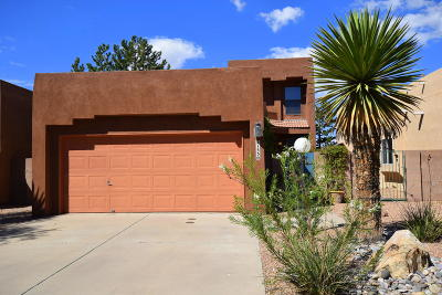 Bernalillo County Single Family Home For Sale: 2153 Black Willow Drive NE