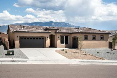Rio Rancho Single Family Home For Sale: 7252 Aldan Drive NE