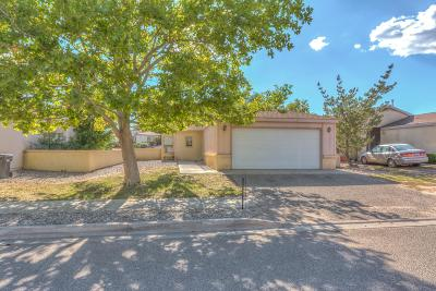 Rio Rancho Single Family Home For Sale: 1673 Perma Drive NE