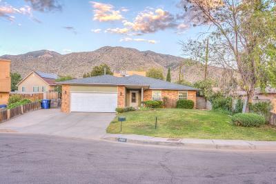 Albuquerque NM Single Family Home For Sale: $265,000