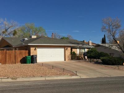 Single Family Home For Sale: 1041 Sandia Vista Road NE