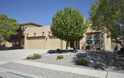Rio Rancho Single Family Home For Sale: 2317 Portafino Avenue SE