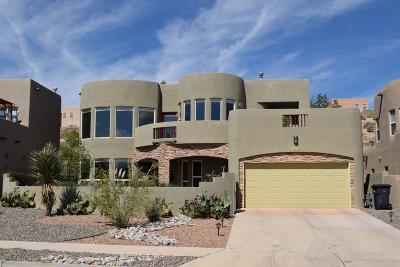 Rio Rancho Single Family Home For Sale: 1373 Wilkes Way SE