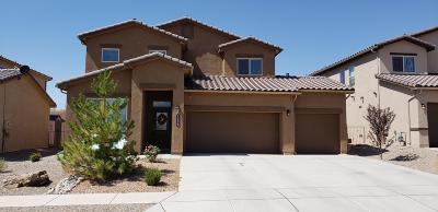 Rio Rancho Single Family Home For Sale: 7059 Wrangell Loop NE