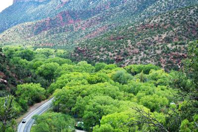 Jemez Springs NM Residential Lots & Land For Sale: $299,000