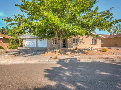 Single Family Home For Sale: 10421 Guadalajara Avenue NE