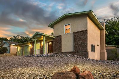 Albuquerque NM Single Family Home For Sale: $290,700