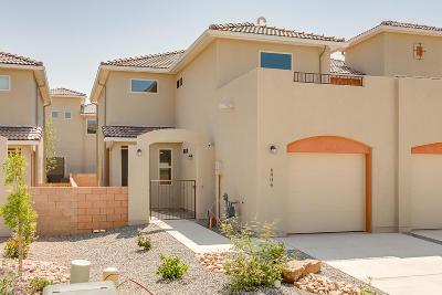 Single Family Home For Sale: 6904 Papaya Street NE