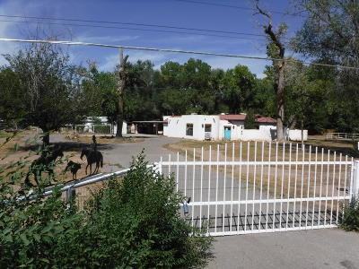 Los Ranchos Single Family Home For Sale: 6821 Rio Grande Boulevard NW