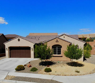 Rio Rancho NM Single Family Home For Sale: $450,000