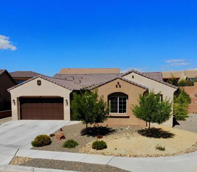 Rio Rancho Single Family Home For Sale: 4030 Plaza Colina Lane NE