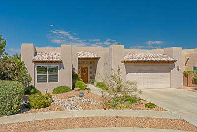 Albuquerque Single Family Home For Sale: 7305 Golden Glow Way NE