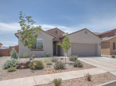 Rio Rancho Single Family Home For Sale: 7122 Overview Road NE