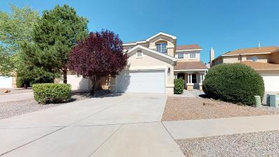 Albuquerque Single Family Home For Sale: 9511 La Rocca Court NW