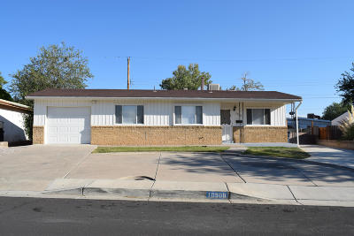 Albuquerque Single Family Home For Sale: 10508 Princess Jeanne Avenue NE