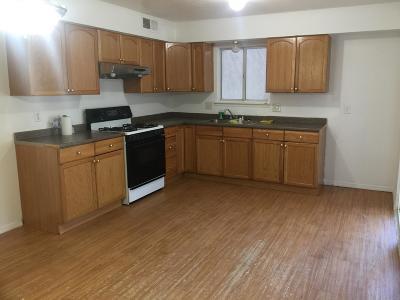 Albuquerque Single Family Home For Sale: 10207 Del Rey Road SW