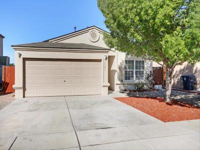 Albuquerque Single Family Home For Sale: 1151 Alexandra Street SW