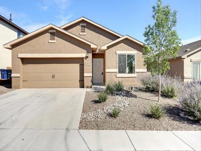 Albuquerque Single Family Home For Sale: 10819 Four Mile Road SW