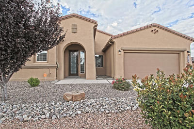 Albuquerque Single Family Home For Sale: 8409 Chilte Pine Road NW