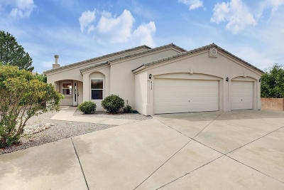 Albuquerque Single Family Home For Sale: 4112 Willowbrook Place NW