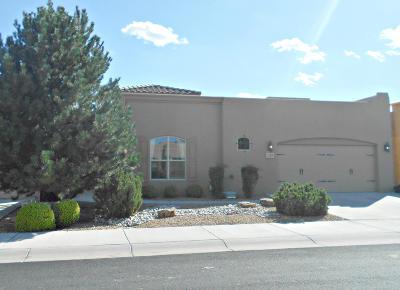 Albuquerque Single Family Home For Sale: 1328 Valle Lane NW