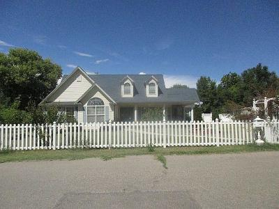 Albuquerque Single Family Home For Sale: 2710 Fantozzi Road SW