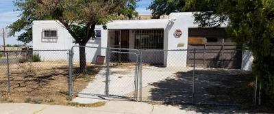 Albuquerque Single Family Home For Sale: 10801 Prospect Avenue NE