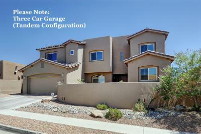 Albuquerque NM Single Family Home For Sale: $669,900