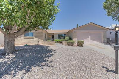 Albuquerque NM Single Family Home For Sale: $230,000