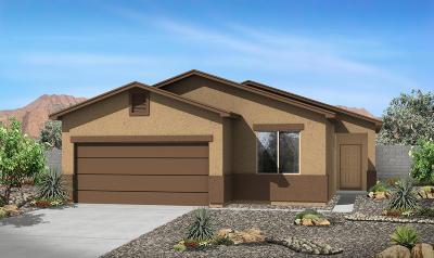 Albuquerque NM Single Family Home For Sale: $232,570