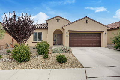 Albuquerque Single Family Home For Sale: 9520 Stone Ridge Drive NW