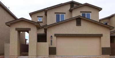 Albuquerque NM Single Family Home For Sale: $262,655
