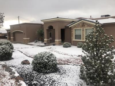 Los Lunas Single Family Home For Sale: 1319 Coplen Drive SW
