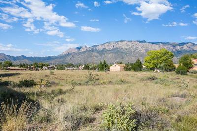 Residential Lots & Land For Sale: San Antonio NE