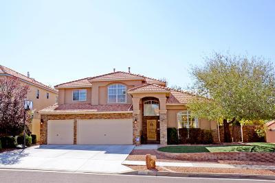 Albuquerque Single Family Home For Sale: 12032 Caribou Avenue NE