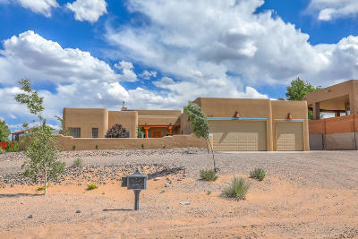 Rio Rancho Single Family Home For Sale: 2202 Chessman Drive NE