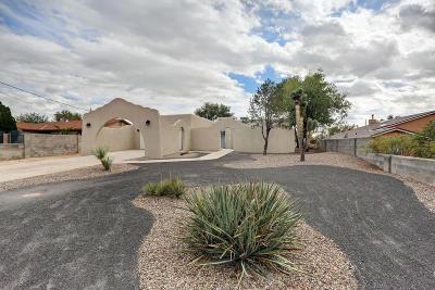 Rio Rancho Single Family Home For Sale: 3112 19th Avenue SE