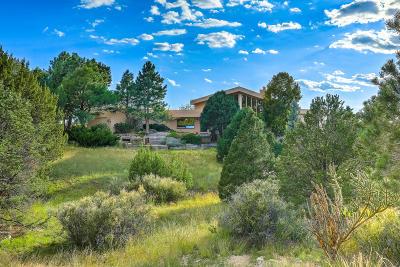 Sandia Heights Single Family Home For Sale: 1542 Eagle Ridge Place NE