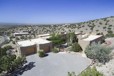 Placitas Single Family Home For Sale: 2 Sandhill Crane Circle