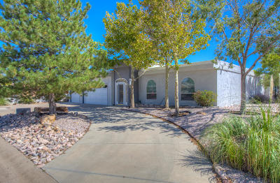 Rio Rancho Single Family Home For Sale: 806 Palmas Altas Drive SE